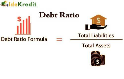 Apa Itu Debt Ratio
