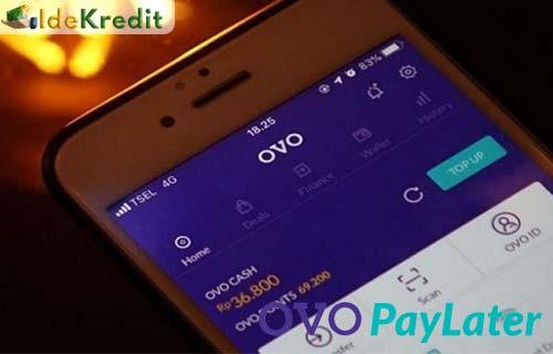 Cara Bayar OVO Paylater Pakai OVO Cash