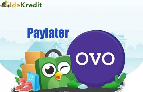 Cara Bayar OVO Paylater