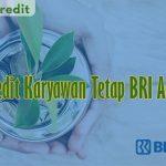 Kredit Karyawan Tetap BRI Agro