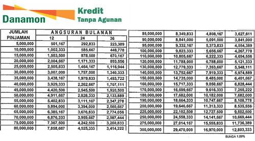 KTA Danamon Plafond Pinjaman Rp 300 juta
