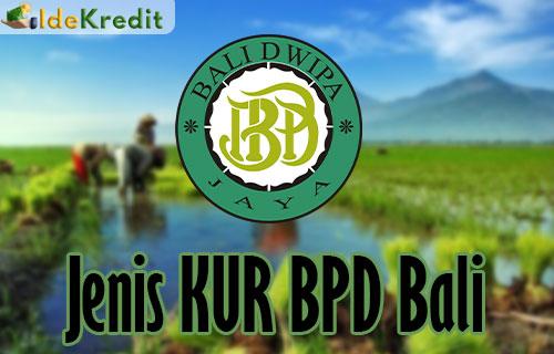 Jenis KUR BPD Bali