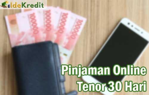 Pinjaman Online Tenor 30 Hari