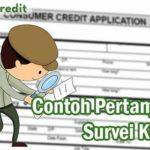 Contoh Pertanyaan Survei Kredit