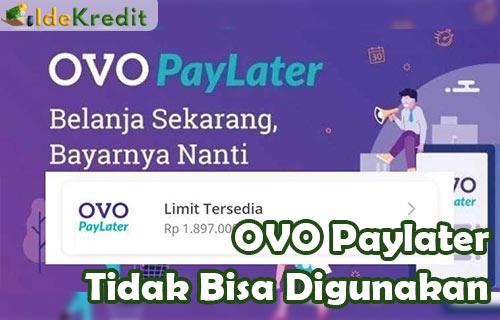 OVO Paylater Tidak Bisa Digunakan