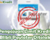Pengajuan Blibli Paylater Ditolak